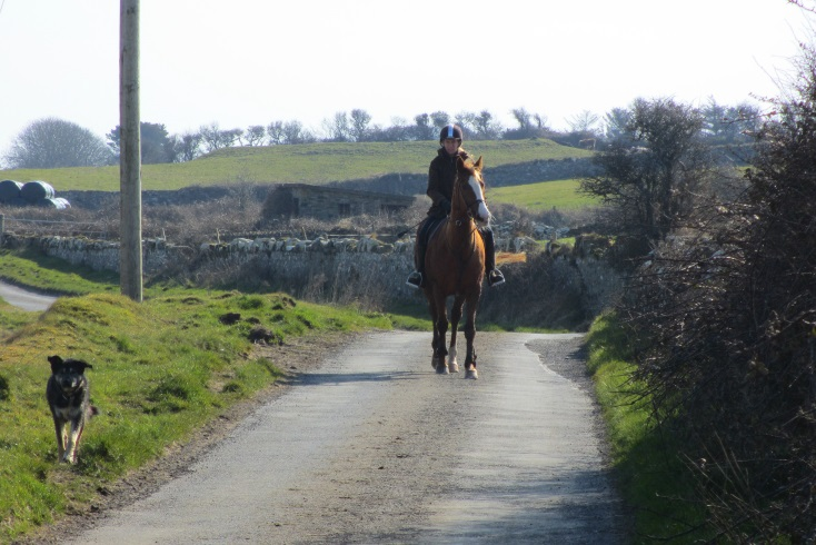 Annagh | Ballinrobe, County Mayo - Hogans Irish Cottages